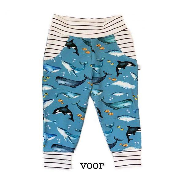 Dolfijn broekje